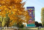 Художники украсили дома ставропольского поселка в рамках фестиваля «Культурный код»