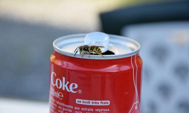 Вгосударстве Украина  под угрозой остановки заводы Coca-Cola, PepsiCo иCarlsberg