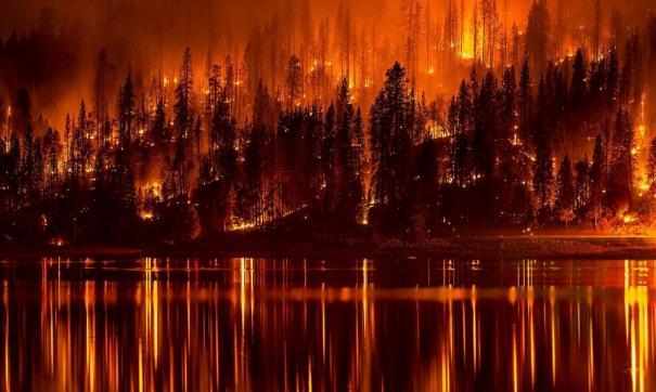Жертвами пожаров в Греции стали более 90 человек