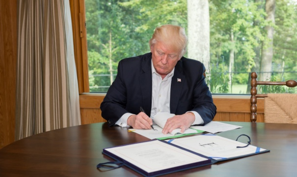 Трамп может поменять  руководителя  Пентагона после промежуточных выборов вконце осени