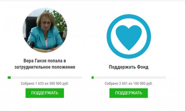 В Екатеринбурге объявили сбор средств для депутата, которая жаловалась на зарплату в 380 тысяч рублей