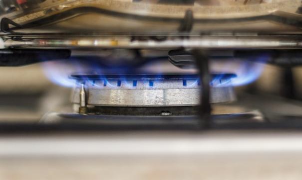 Часть нижегородцев поддерживает отказ от бытового газа в жилых домах