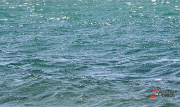 Толчки случились неподалеку от побережья