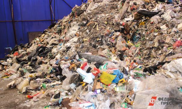 Единый экологический оператор поможет не утонуть в мусоре