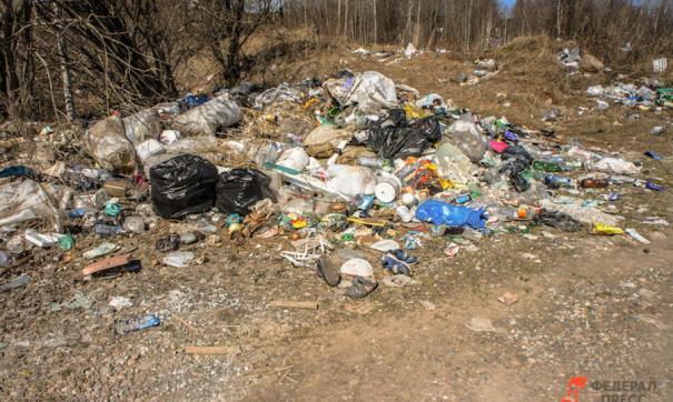 Известно о 35 точках незаконного скопления мусора