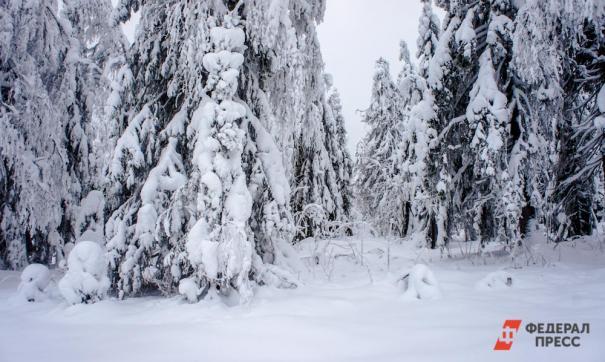 девушки заблудились на севере Свердловской области