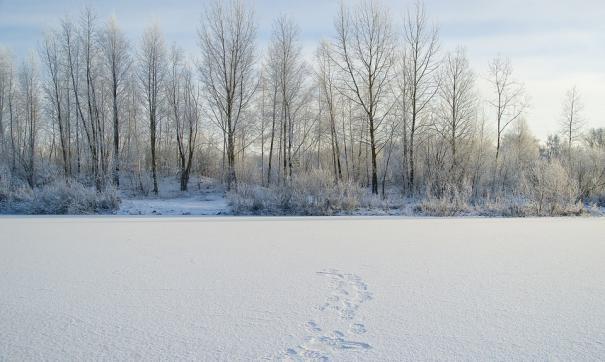 На Шершневском водохранилище обнаружено 30 несанкционированных свалок