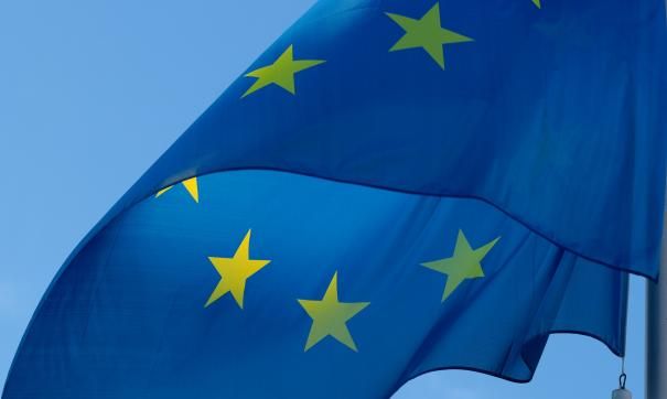 Пескова стажируется в Европарламенте как обычная студентка