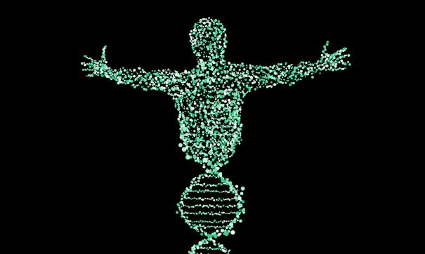 Новые исследования гена CCR5 предполагают значительное улучшение памяти и когнитивных способностей.