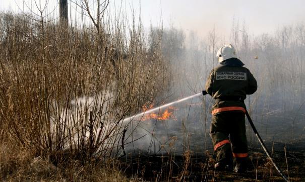 В Чернобыльской зоне отчуждения загорелся лес