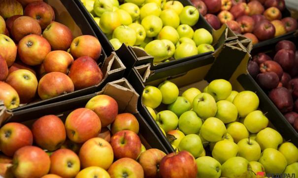 Самый здоровый рацион питания у испанцев и израильтян