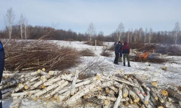 Строительство любого объекта на этом участке может оказать дополнительную нагрузку на единственный питьевой источник Челябинска