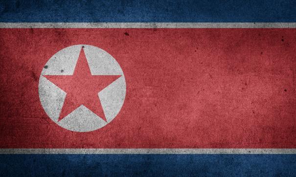 Личный фотограф Ри на 3 секунды заслонил «отца северокорейского народа».