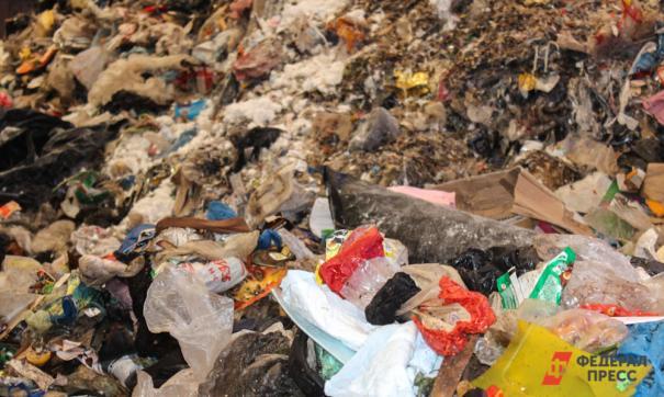 Где взять столько мусора?