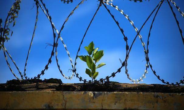 В Туве из временного изолятора сбежали девять задержанных