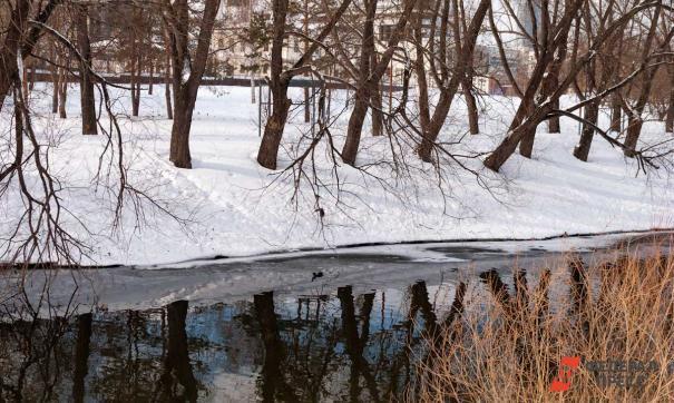 В Ленобласти девушка припарковала автомобиль в реке
