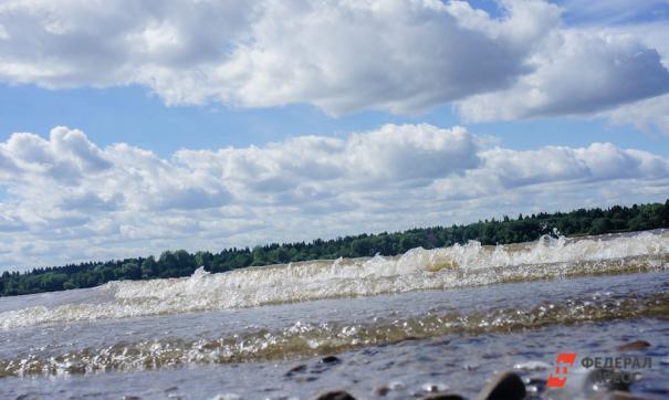 Активисты в Ленобласти нашли виновных в загрязнении проточной воды испражнениями