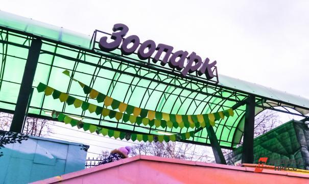 Новый зоопарк будет способен принять полмиллиона посетителей в год