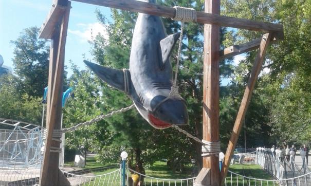 скульптура акулы