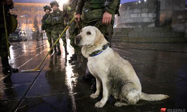 Только обученная собака понимает, когда необходимо проявить агрессию
