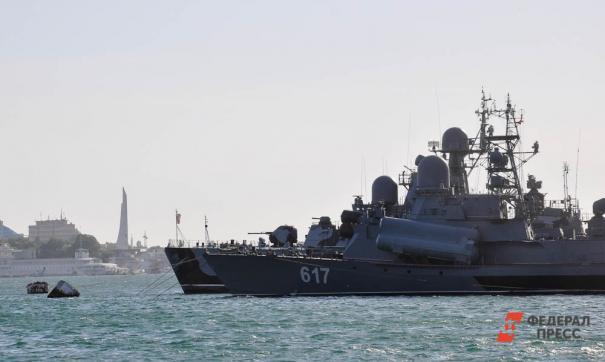 В Институте проблем экологии и эволюции имени Северцова РАН признали, что российские военные работают с китами-белухами