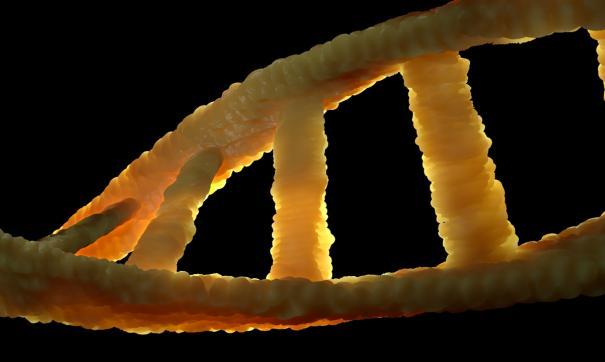 Мат якобы вызывает мутации в организме человека