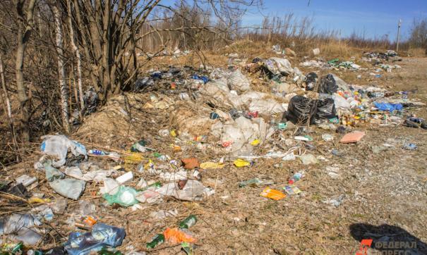 В Коми и Архангельской области активисты проекта «Генеральная уборка» посчитали свалки