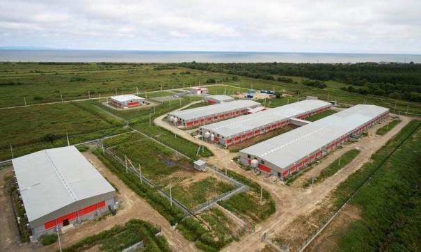 Челябинские предприятия сегодня поставляют в Китай макаронные изделия, мясо всех видов, крупу и муку