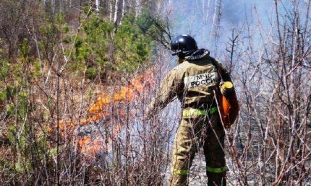 Пожары в Курганской области мобилизовали службы Южного Урала