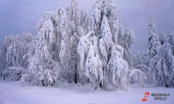 Ученые УрФУ считают, что потепление на Земле запускает обратный процесс.