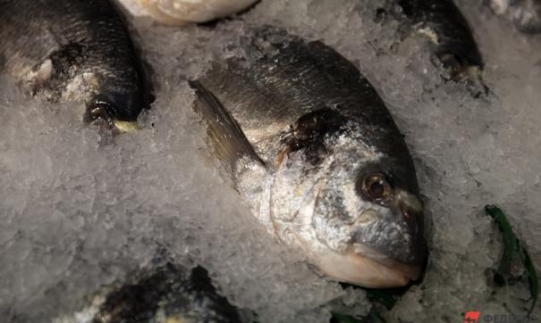 На Урале прокуратура возбудила уголовное дело из-за массовой гибели рыбы в реке Пышме