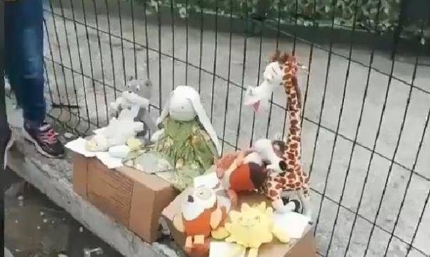 Детям из Владивостока пришлось продать свои игрушки, чтобы купить еды