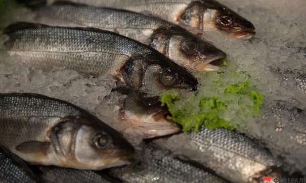 «Рыбная банда» из Хабаровского края отправится в колонию