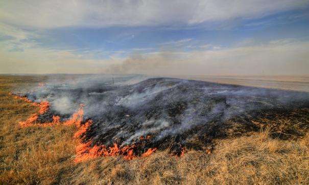 С начала года на Сахалине произошло более 1300 пожаров. В основном они происходят из-за банальной беспечности