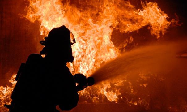 Площадь пожара составляет около 8 гектаров