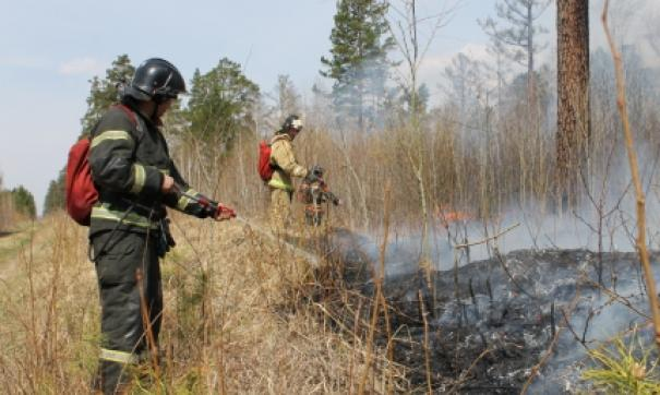 Пожар действует в 12 километрах от населенного пункта