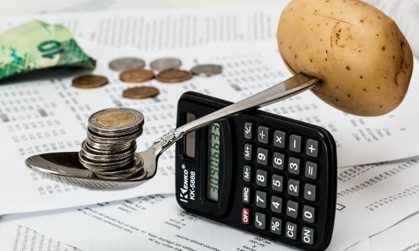 Безусловный базовый доход – экономическая панацея человечества, считает автор