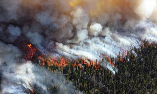 Пожарные не могут остановить огонь в провинции Альберта с конца мая.