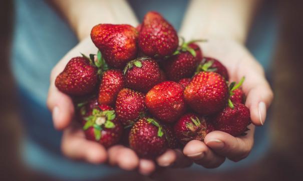 Сезон продажи ягод вот-вот наступит, и специалисты советуют соблюдать несколько правил при покупке.