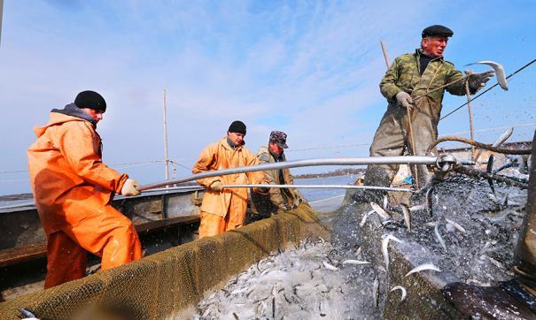 В Тюменской области планируют развивать рыбохозяйственную деятельность