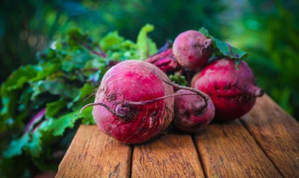 Земли агрохолдинга оцениваются в 10,6 млрд рублей