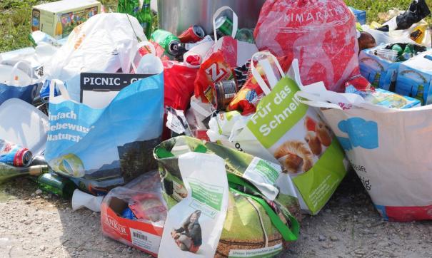 Ситуация с мусором, сложившаяся в одном из районов Омска, будет решена