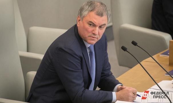 Володин поддержал идею установить памятник Петру Первому в Саратове