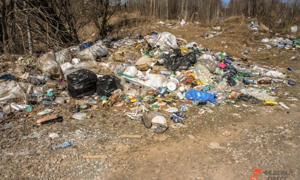 Отходы на несанкционированной свалке вблизи Рязани накапливались с 2009 года