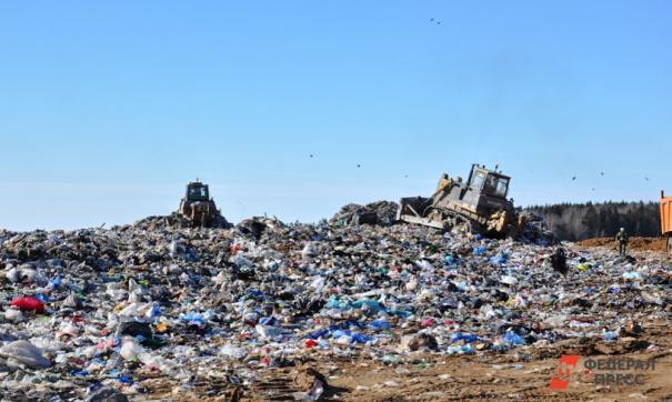 Также осенью на полигоне планируют запустить четыре дополнительные мусоросортировочные линии