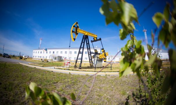 Первая нефтяная скважина здесь введена в промышленную эксплуатацию в 2004 году