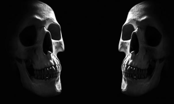 Радиоугреродный анализ черепов из греческой пещеры Апидма установил возраст останков в 210 тысяч лет.