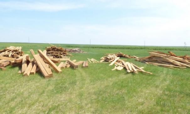 Бесплатные гектары теперь доступны в Забайкалье и Бурятии