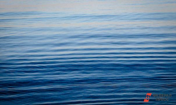 В бухте Гертнера в Магадане рыбаки перекрыли бухту сетями