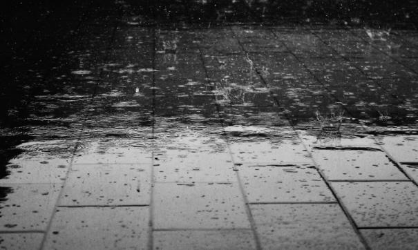 Дождь в Новосибирске шел всю ночь